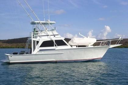 Striker 44 Costa Brava vissen