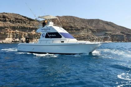 White Marlin Gran Canaria vissen