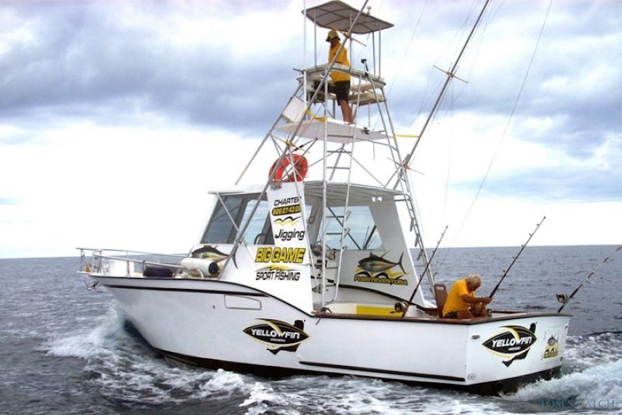 Charters Yellow Fin 1