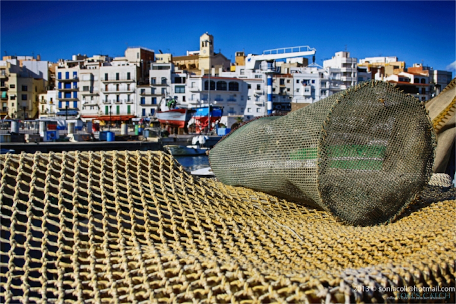 Ametlla de Mar visgebied