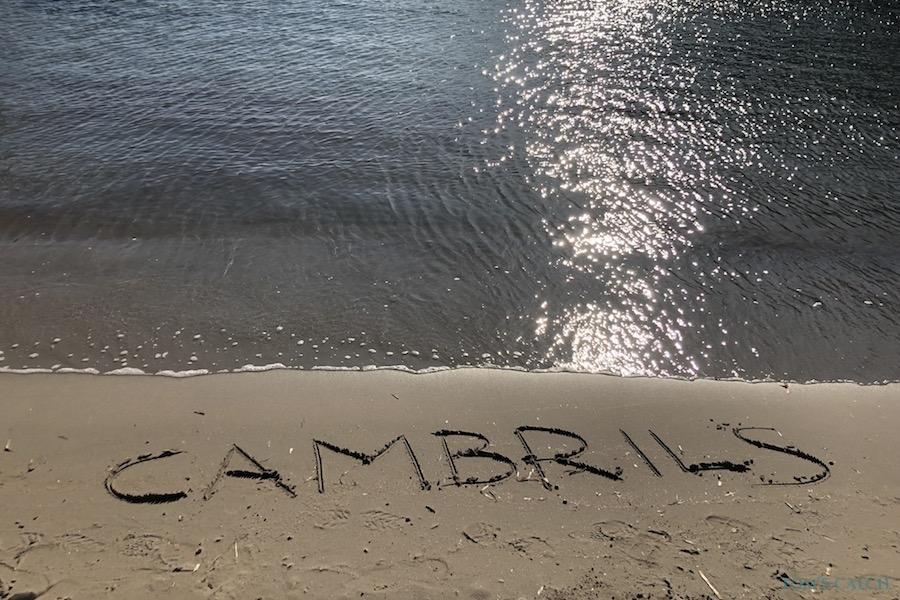 Cambrils visgebied