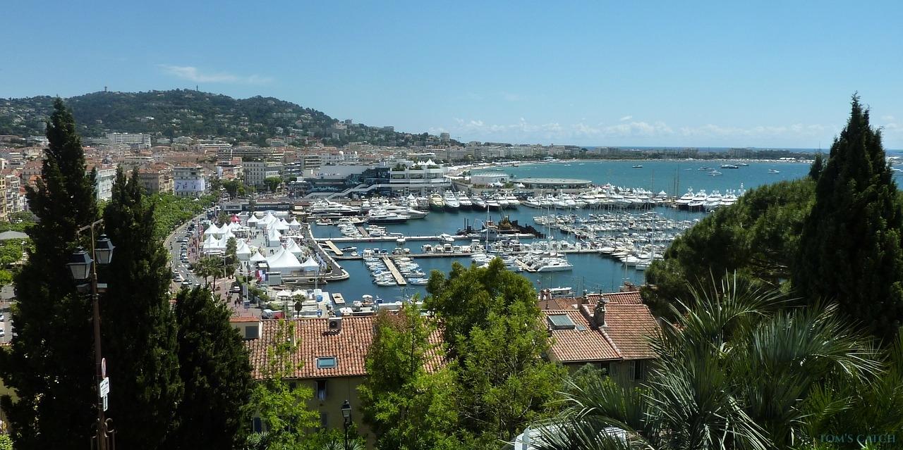 Cannes visgebied