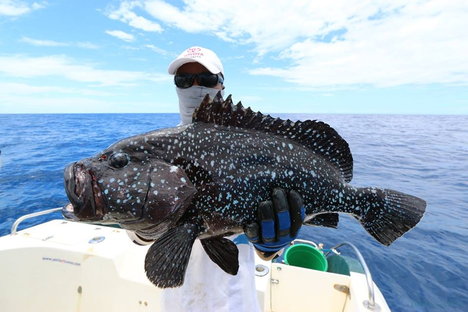 Madagascar visgebied