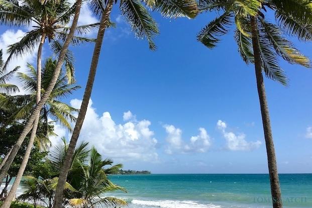 Vistrips in Martinique