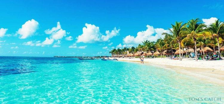 Playa del Carmen visgebied