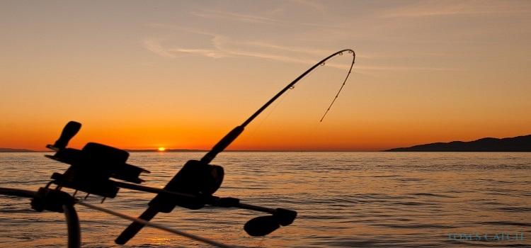 Zanzibar visgebied