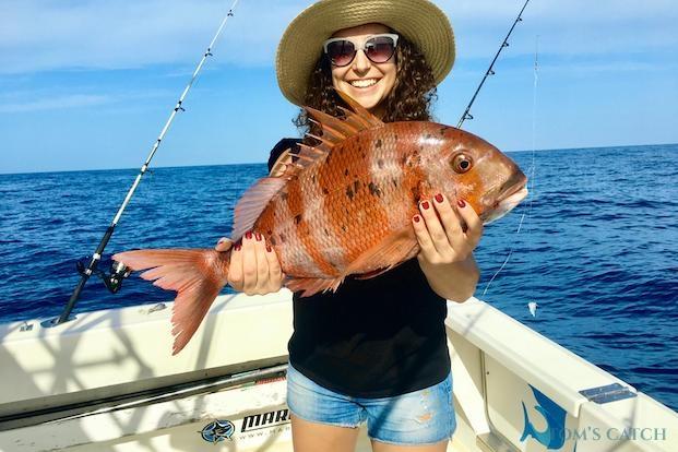 Gestreepte zeebrasem vissen
