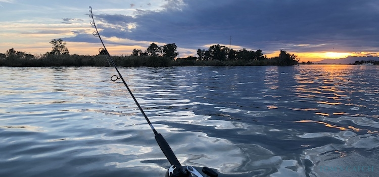 Zona de pesca Delta del Ebro