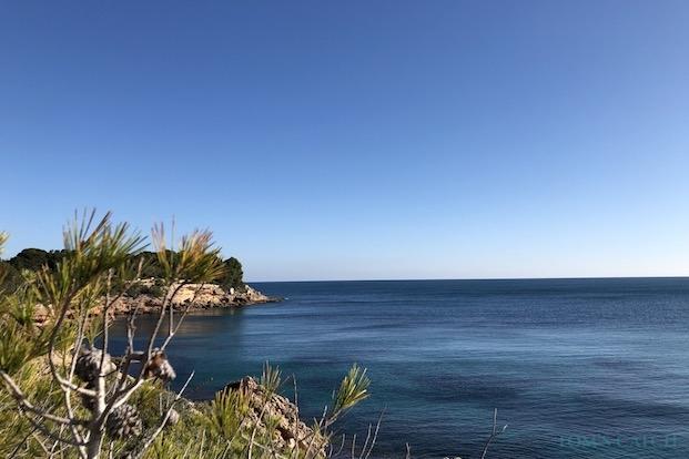 Excursiones de pesca en L'Ametlla de Mar