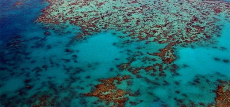 Zona de pesca Queensland