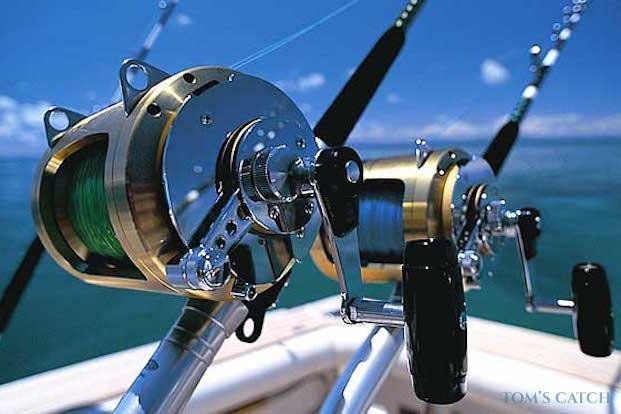 Excursiones de pesca en República Dominicana