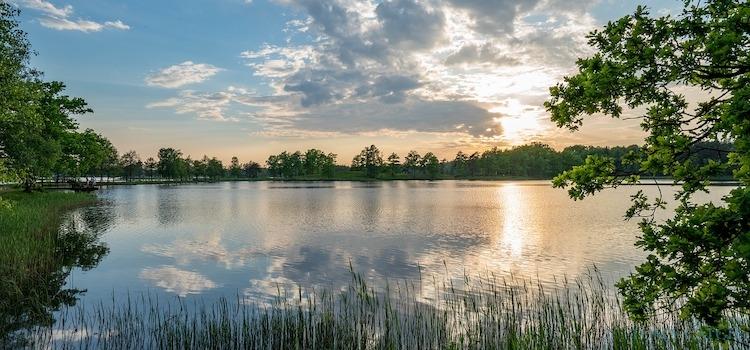 Zona de pesca Suecia