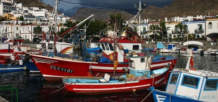 Zona de pesca Tenerife