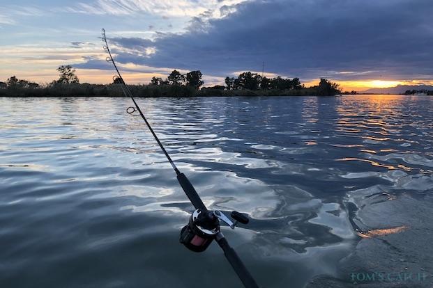 Sorties de pêche Delta de l'Ebre