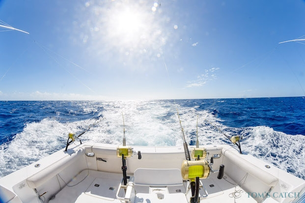 Sorties de pêche Île Maurice