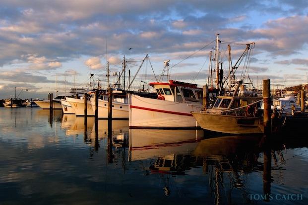 Sorties de pêche New South Wales