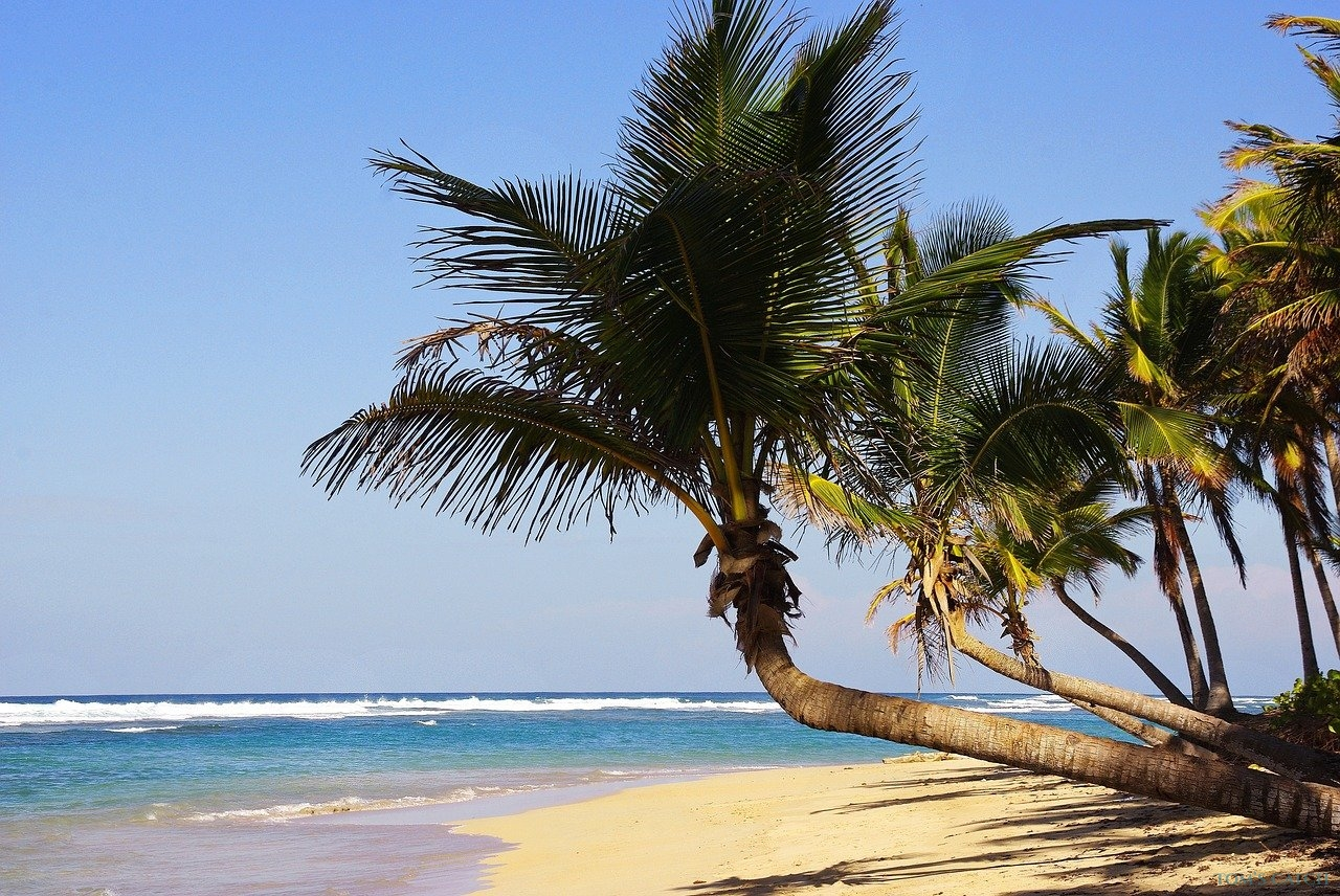 Zone de pêche Punta Cana